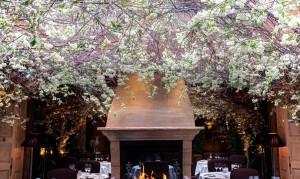 Clos Maggiore Restaurant Casa Forma Interior Design