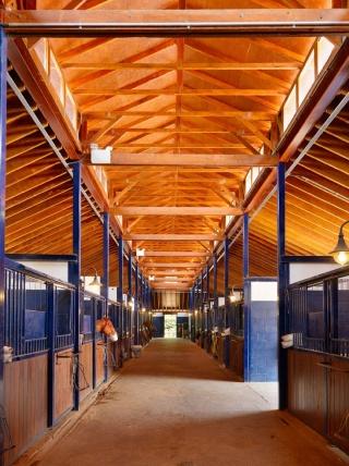 casa forma billingbear polo club stables